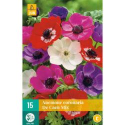 Anamone Coronaria de Caen Mix 15st.