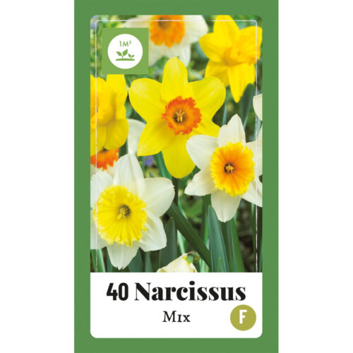 Narcissus Mix 40st.