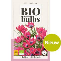 Bio Tulpen Little Beauty 7st.