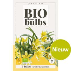 Bio Tulpen Tarda Dasystemon 7st.