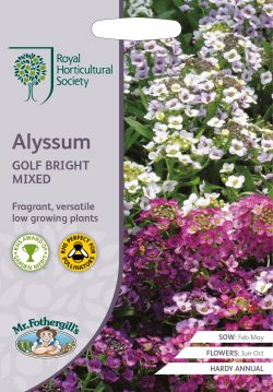 RHS zaden Alyssum Golf Bright Mixed