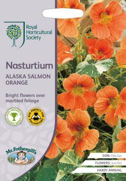Zaden RHS Nasturtium Alaska Salom Orange
