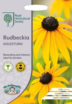 Rudbeckia Goldsturm RHS Zaden