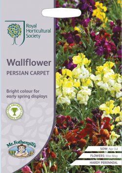 RHS Muurbloem Wallflower Persian Carpet Zaden
