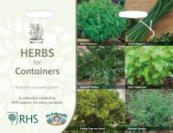 zaden voor potten