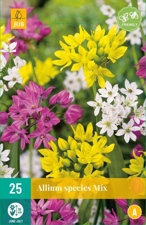 Allium Species Mix 25st