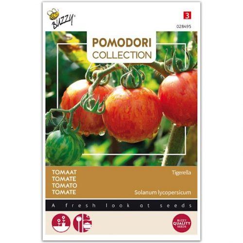 Buzzy Pomodori Tomaat - Tigerella