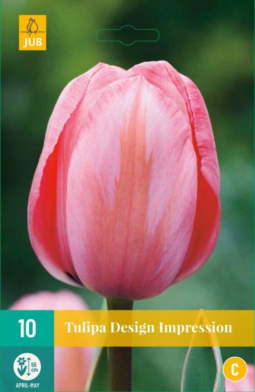Tulpen Design Impression