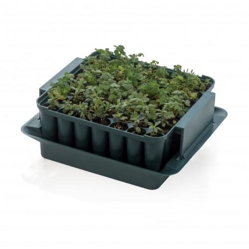 Zaaibakje-voor-49-plantjes