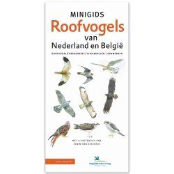 minigids roofvogels van nederland en belgie
