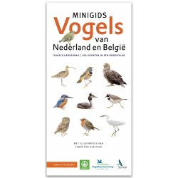 minigids vogels van nederland en belgie