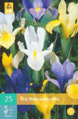 Iris Hollandica Mix 25st.