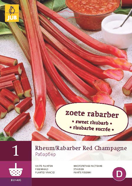 Rabarber Red Champagne 1st.
