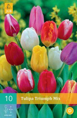 Tulpen Triumph Mix 10st.