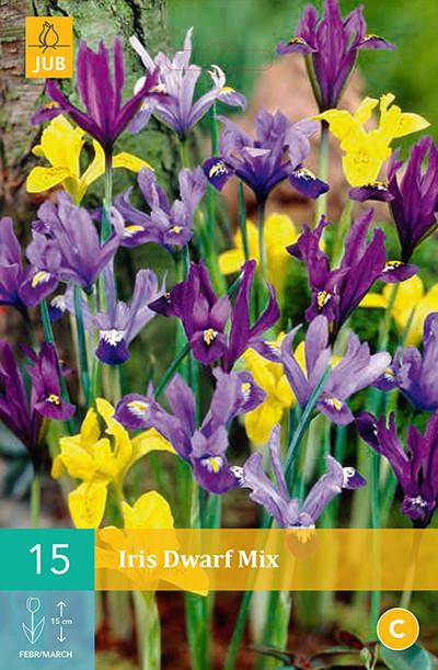 Iris Dwarf Mix 15st.