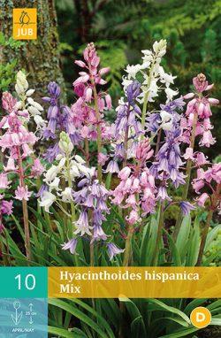 Hyacinthoïdes Hispanica Mix 10st.