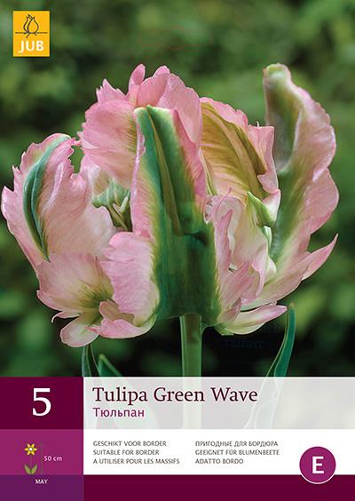 Tulpen Green Wave 5st.