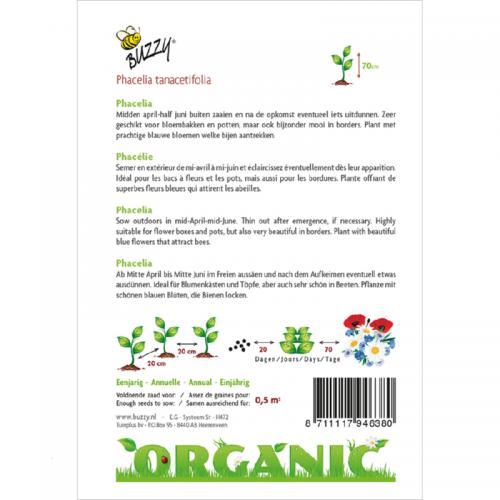 Phacelia Tanacetifolia (bijenvoer)