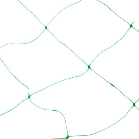 Klimgaas groen