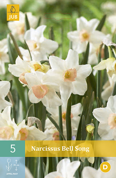 Narcissus Bell Song 5st.