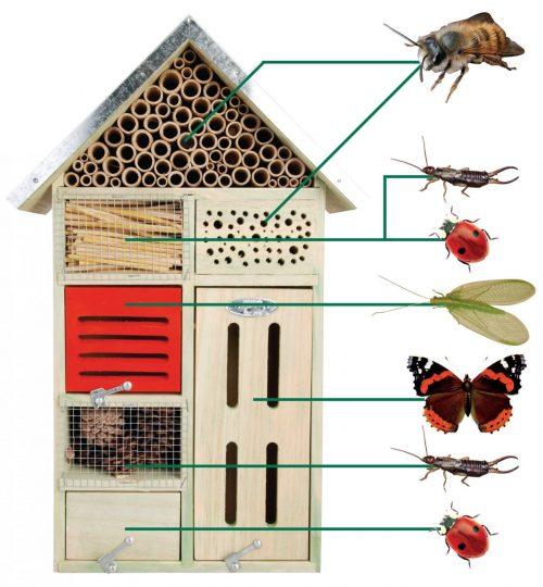 Insectenhotel L