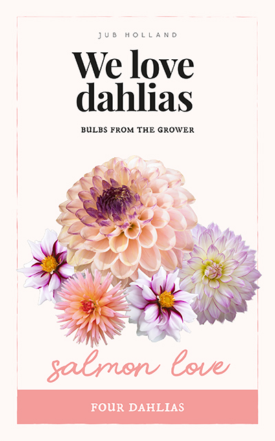 We Love Dahlia's Salmon Love 4st.