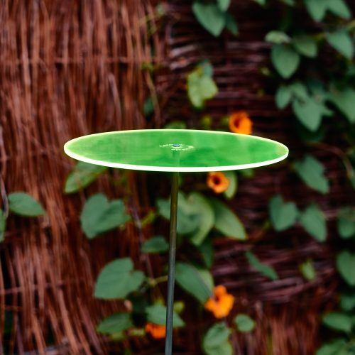 Zonnevanger Cazador-del-sol Uno groen