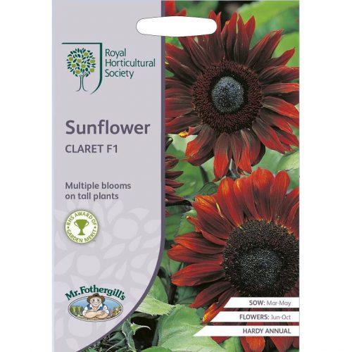 Zonnebloem Sunflower Claret RHS Zaden