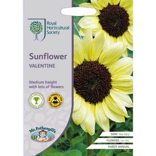 Zonnebloem Sunflower Valentine RHS Zaden